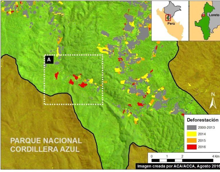 REDD+: Áreas protegidas generaron más de S/.114 millones con proyectos de conservación